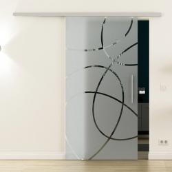 Glasschiebetür SoftClose-Schiene 900 x 2050mm Ellipsen-Design (E) Stangengriff