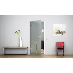 Glastür Ganzglastür Drehtür aus ESG-Glas (Einscheibensicherheitsglas) LEVIDOR ® in Senkrecht-Streifen-Design (T)  für Studio Gri